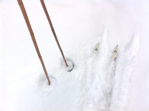 ski de fond au parc Michel Chartrand